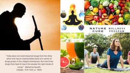 Nature Cure Wellness Program 2